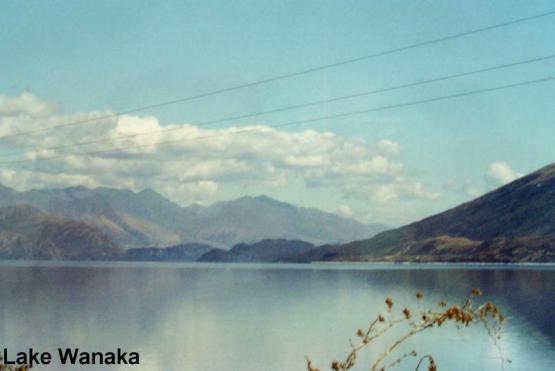 Bild Nr. 18199 - 167 mal gesehen