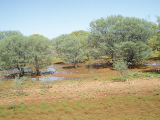 Bild Nr. 18775 - 246 mal gesehen