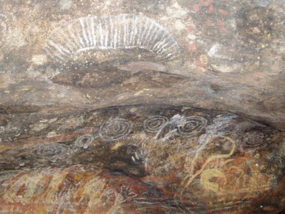 Bild Nr. 18794 - 187 mal gesehen