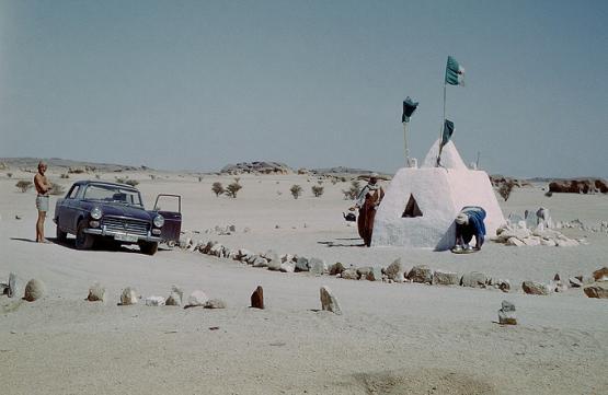 Bild Nr. 19827 - 349 mal gesehen
