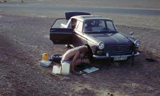 Bild Nr. 19828 - 347 mal gesehen
