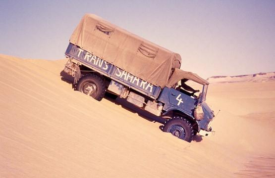 Bild Nr. 19829 - 380 mal gesehen