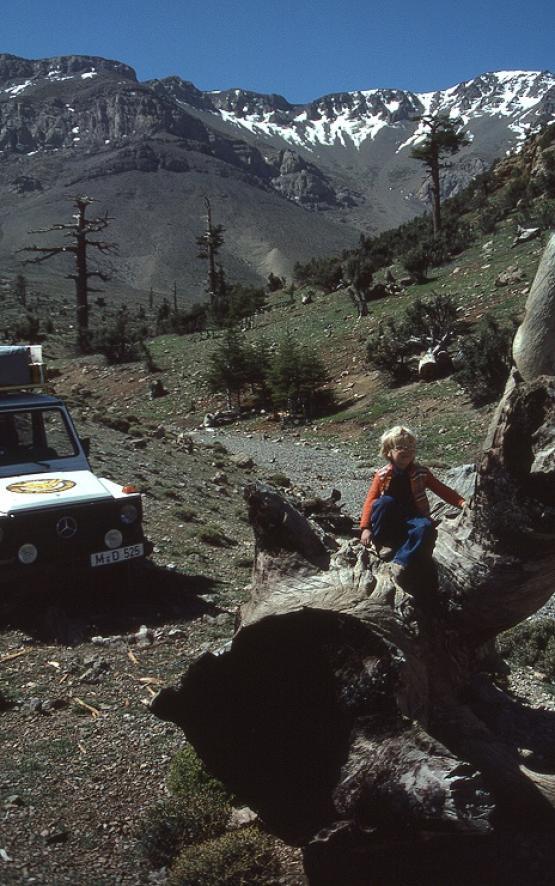 Bild Nr. 19837 - 251 mal gesehen