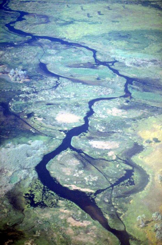 Bild Nr. 19864 - 237 mal gesehen