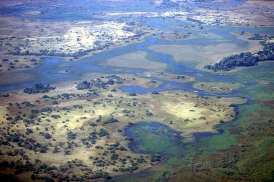 Bild Nr. 19865 - 226 mal gesehen