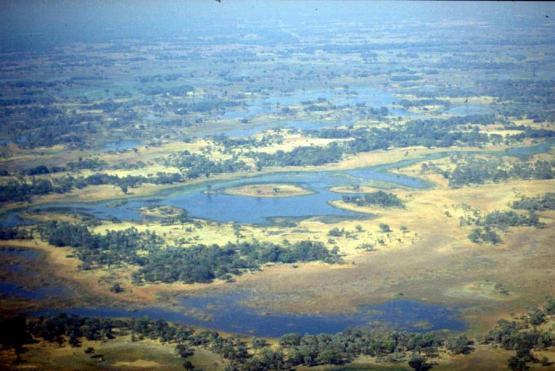 Bild Nr. 19866 - 211 mal gesehen