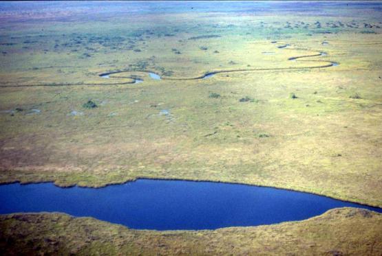 Bild Nr. 19870 - 174 mal gesehen