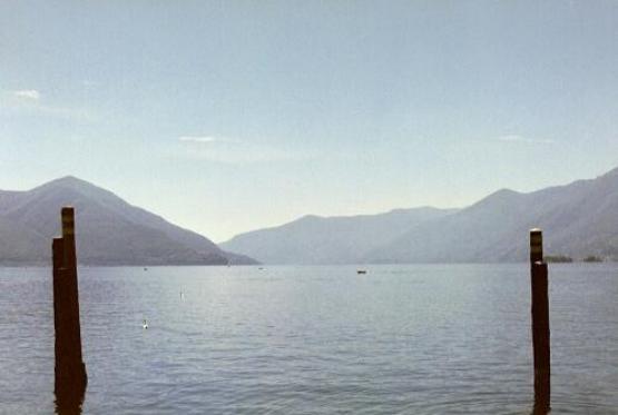 Bild Nr. 3534 - 219 mal gesehen