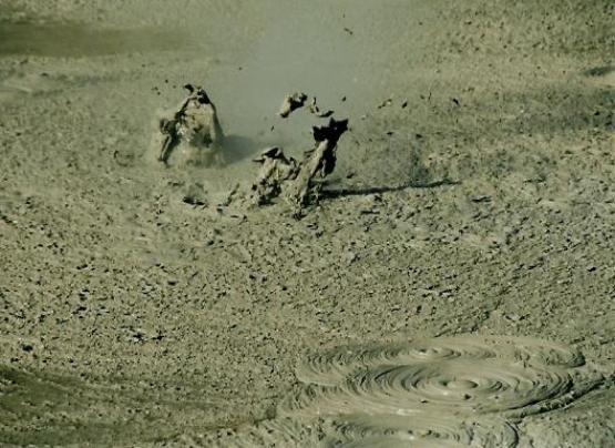 Bild Nr. 472 - 207 mal gesehen